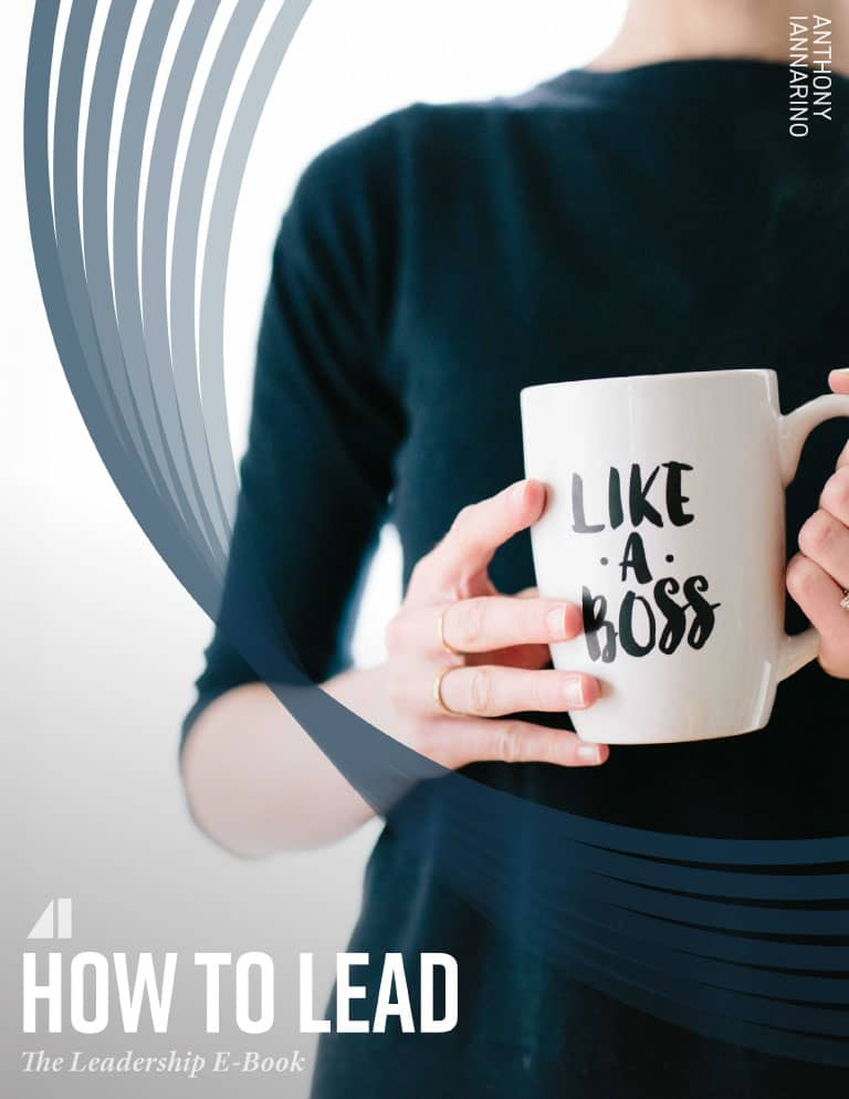 how-to-lead-ebook-v3-1-cover (3)