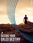 Seizing Your Sales Destiny eBook